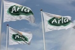 Focus: Can Arla jump-start flavoured milk?