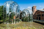 Bacardi opened its Bombay Sapphire distillery in the UK last year