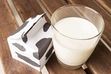 Australias consumer watchdog probes raw milk sales