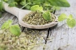 Fake oregano on sale in UK - tests