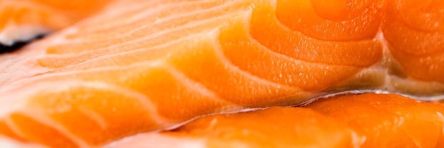 FDA approves genetically engineered salmon