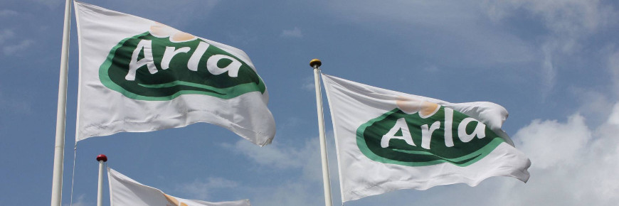 Arla to cut jobs as dairy giant reshapes in bid for growth